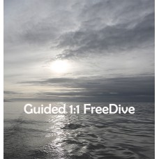 Guided Freedive 1:1