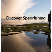 Discover Spearfishing & Freediving ( Half Day Experience)
